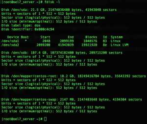 FDISK to partition the disks in Linux
