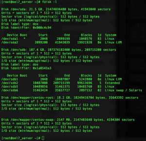 How to use FDISK in Linux to partitioning the disks